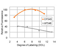 Figure 3. Comparison of relative fluorescence of goat anti-mouse IgG antibody labeled with CF543 and Alexa Fluor 546, respectively, at various degree of labeling (DOL) (number of dye/protein) in PBS