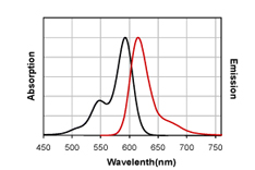 Figure 1. Absorption and emission spectra of CF?594 conjugated to goat anti-mouse IgG in PBS.