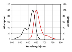 Figure 1. Absorption and emission spectra of CF™633 conjugated to goat anti-mouse IgG in PBS.