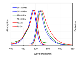 Figure 1. Absorption and emission spectra of CF™488A (blue), Alexa Fluor® 488 (green) and FITC (red) conjugated to goat anti-mouse IgG in PBS.