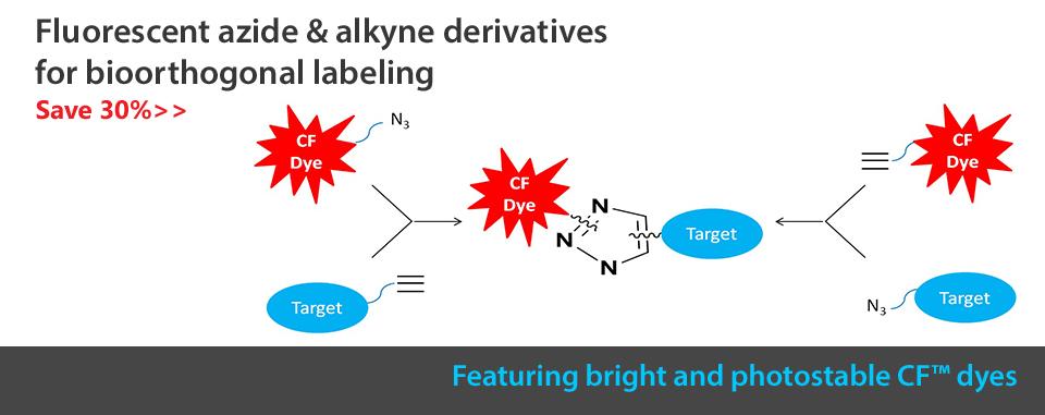 Alkyne Azide Special