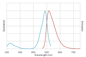 Excitation and emission spectra of NucView® 530 dye with dsDNA.