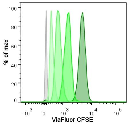 Viafluor CFSE