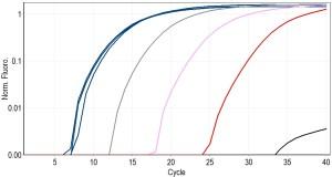 Bsub_PMAxx_curves_2_noborder