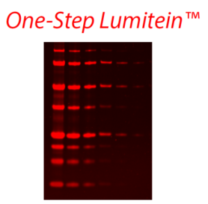 One-Step-Lumitein gel