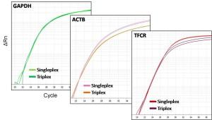 Probe triplex PCR