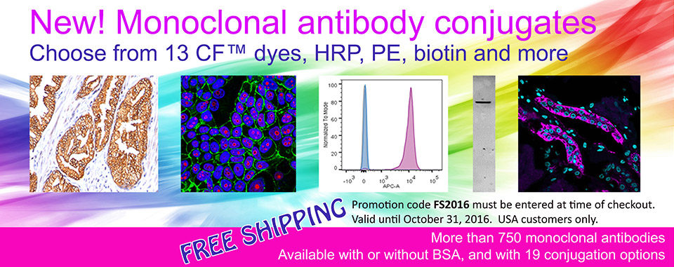 Primary antibodies free shipping