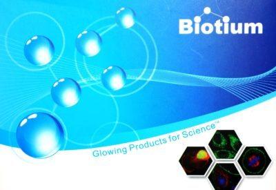 Mix-n-Stain CF Dye Antibody Labeling Kits