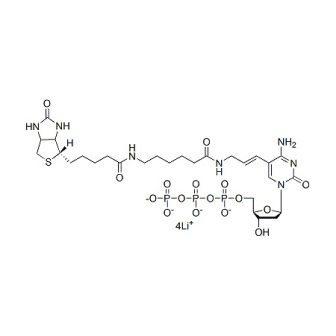 Biotin-11-dCTP, 1 mM solution