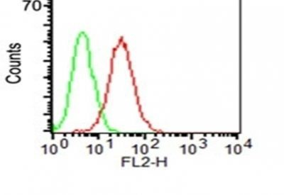 Monoclonal anti CD34 (ICO 115)