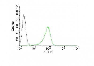 Monoclonal anti Human Nuclear Antigen (235 1)