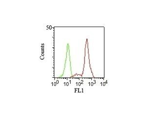 Monoclonal anti CD11c (HC1/1)