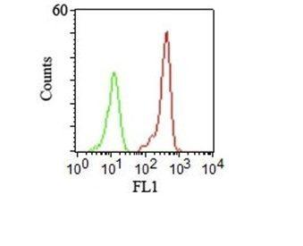 Monoclonal anti CD46 (122.2)