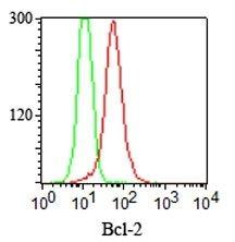 Monoclonal anti bcl 2 (124)