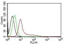 Monoclonal anti Ku Holo (p70;83) (KU729)