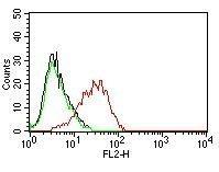 Monoclonal anti Ep CAM / CD326 (EGP40/837)