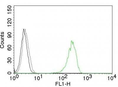 Monoclonal anti CD71 (66IG10)
