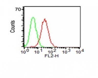 Monoclonal anti CD34 (HPCA1/1171)