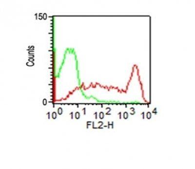 Monoclonal anti CD45RO (UCHL-1 + T200/797)