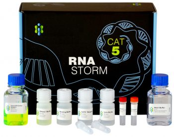 RNA Extraction Kit - RNAStorm