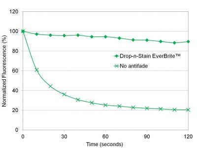 Drop-n-Stain EverBrite FITC