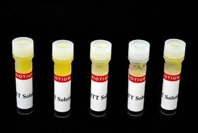 MTT Cell Viability Assay Kit