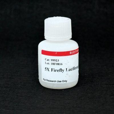 5X Firefly Luciferase Lysis Buffer