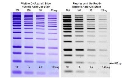 DNAzure® Blue Nucleic Acid Gel Stain, 100X
