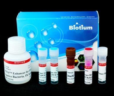 PMA Real-Time PCR Bacterial Viability Kit – E. coli (uidA)