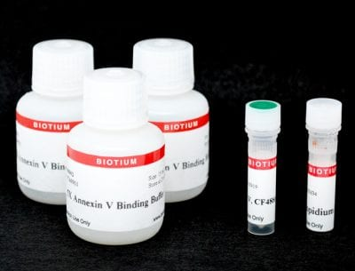 CF®488A Annexin V and PI Apoptosis Kit