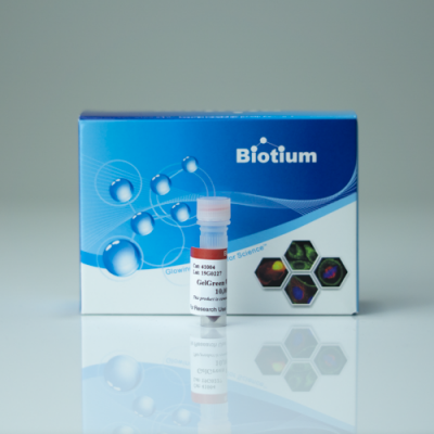 GelGreen™ Nucleic Acid Stain, 10 000x in water Anawa