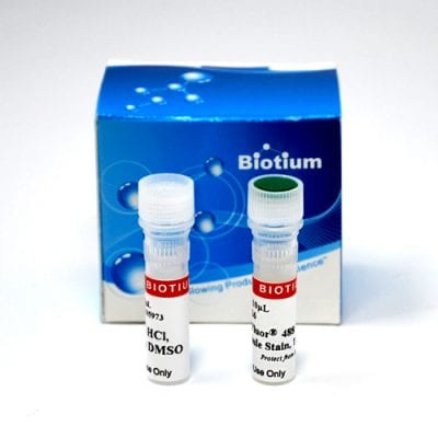 ViaFluor® Live Cell Microtubule Stains
