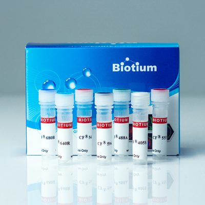 Cholera Toxin Subunit B CF® Dye Conjugates