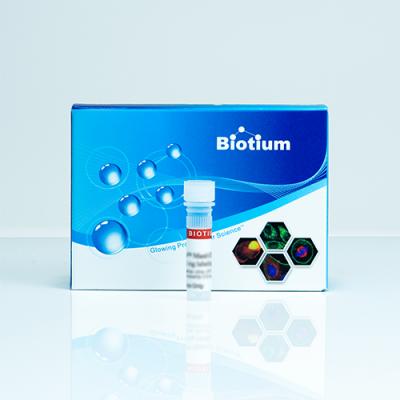 Biotin-16-dUTP, Lyophilized Powder